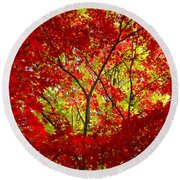 Crimson Window Round Beach Towel