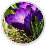 Crocus And Drops Round Beach Towel