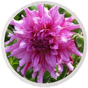 Dahlia Named Annette C Round Beach Towel