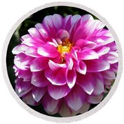 Dahlia Named Brian Ray Round Beach Towel