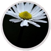 Daisy 1 Round Beach Towel