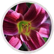 Day Lily 2 Round Beach Towel
