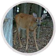 Deer 1 Round Beach Towel