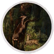 Deer In The Forest Round Beach Towel