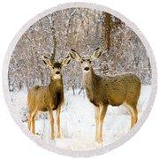 Deer In The Snowy Woods Round Beach Towel