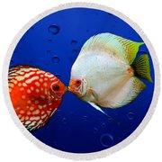 Discus Fish Round Beach Towel