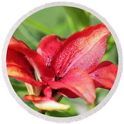 Double Asiatic Lily Named Cocktail Twins Round Beach Towel