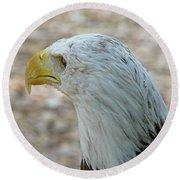 Eagle 3  Round Beach Towel