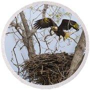Eagle Nest Round Beach Towel
