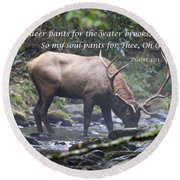 Elk Drinking Water From A Stream Round Beach Towel
