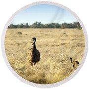 Emu Chicks Round Beach Towel by Tim Hester