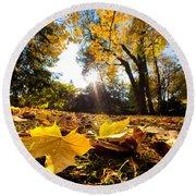 Fall Autumn Park. Falling Leaves Round Beach Towel