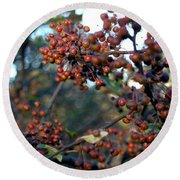 Fall Fruit Round Beach Towel
