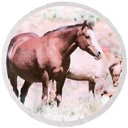 Family Of Horses Round Beach Towel
