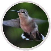 Female Anna's Hummingbird Round Beach Towel