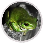 Fence Frog Round Beach Towel