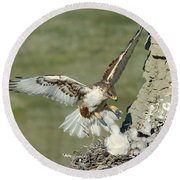 Ferruginous Hawk And Chicks Round Beach Towel