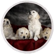 Festive Puppies Round Beach Towel