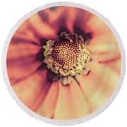 Flower Beauty II Round Beach Towel by Marco Oliveira