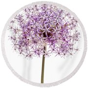 Flowering Onion Round Beach Towel