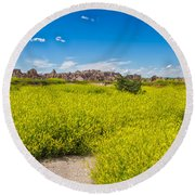 Flowers In The Badlands Round Beach Towel