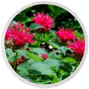 Flying Bee With Bee Balm Flowers Round Beach Towel