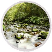 Forest Stream Round Beach Towel by Les Cunliffe