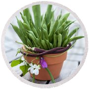 Green Beans In Pot Round Beach Towel