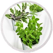 Fresh Herbs In Pots Round Beach Towel