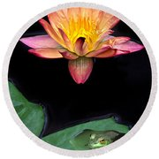 Frog And Waterlily Round Beach Towel