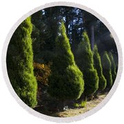 Funeral Cypress Trees Round Beach Towel