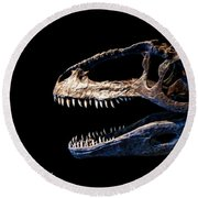 Giganotosaurus Skull 3 Round Beach Towel