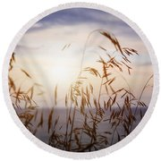 Grass At Sunset Round Beach Towel