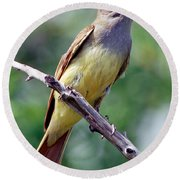Great Crested Flycatcher With Captured Round Beach Towel