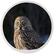 Great Gray Owl Pictures 789 Round Beach Towel