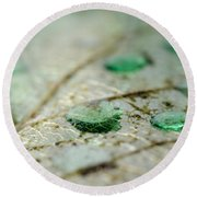 Green Drops Round Beach Towel
