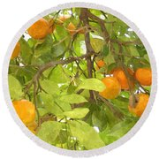 Green Leaves And Mature Oranges On The Tree Round Beach Towel
