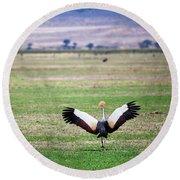 Grey Crowned Crane. The National Bird Of Uganda Round Beach Towel