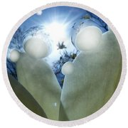 1 H Sphrs Absorbing The Majesty Round Beach Towel