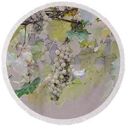 Hanging Thompson Grapes Sultana Round Beach Towel