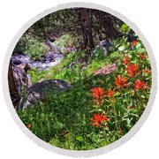 High Country Wildflowers 2 Round Beach Towel