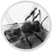 Honey Bee  Round Beach Towel