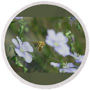 Honeybee At Work  Round Beach Towel