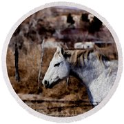 Horsing About V3 Round Beach Towel