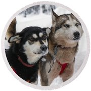 Husky Dogs Pull A Sledge  Round Beach Towel by Lilach Weiss
