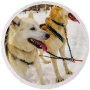 Husky Sled Dogs, Lapland, Finland Round Beach Towel