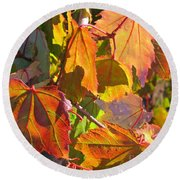 Illumining Autumn Round Beach Towel