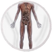 Internal Human Anatomy Round Beach Towel