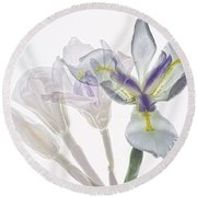 Iris Evolution Round Beach Towel