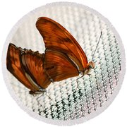 Julia Heliconian Dryas Julia Round Beach Towel